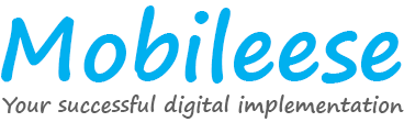 Mobileese, and its network of partners, offer result-oriented business advices and strategic implementations